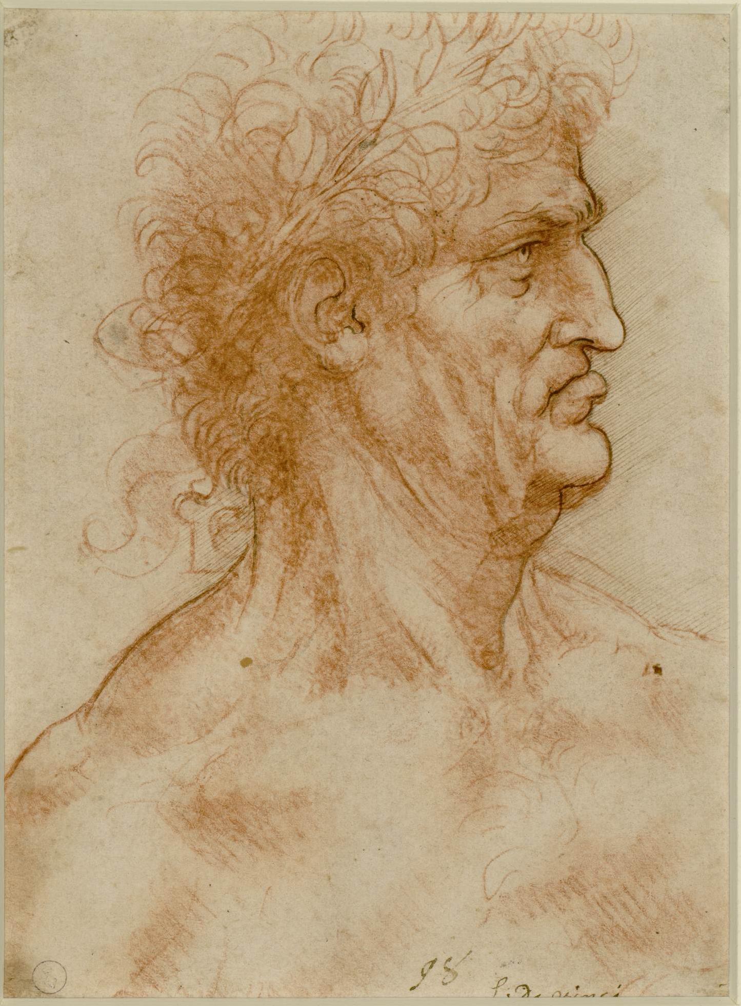 Disegni Leonardo Rinascimento arte classica