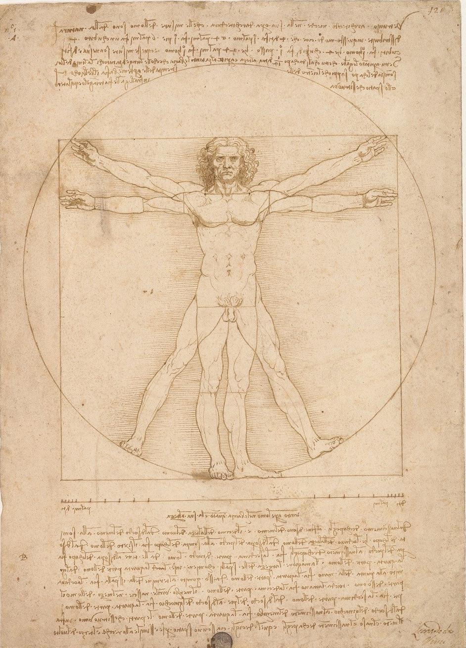Disegni Leonardo Rinascimento arte classica uomo vitruviano
